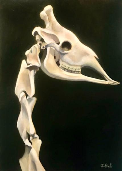 Giraffe Head - paper print