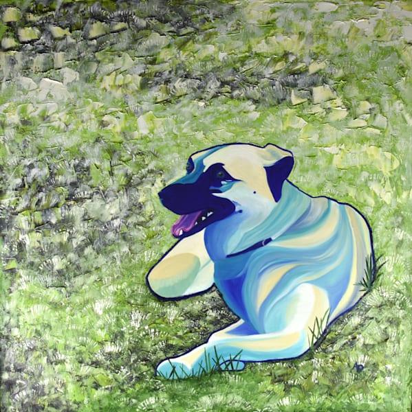 Dog On Grass 300dpi Art | Amy O'Hearn Art