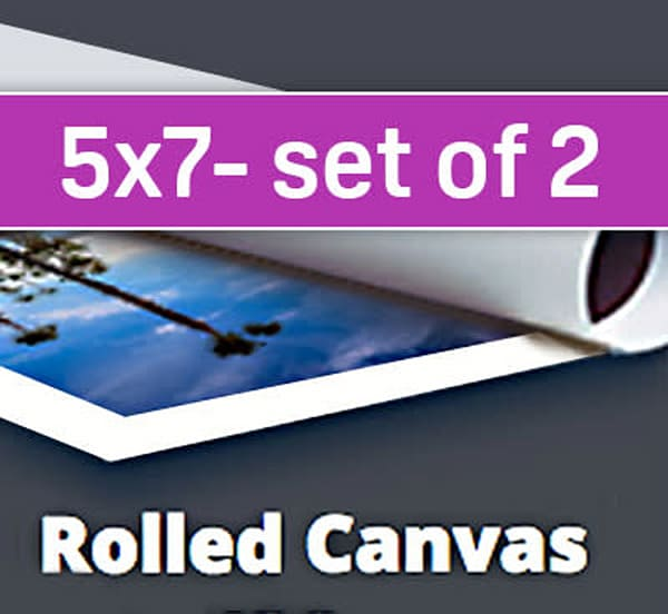 5X7 Canvas Sample Pack (two 5x7's)