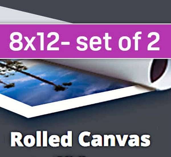 8X12 Canvas Sample Pack (two 8x12's)