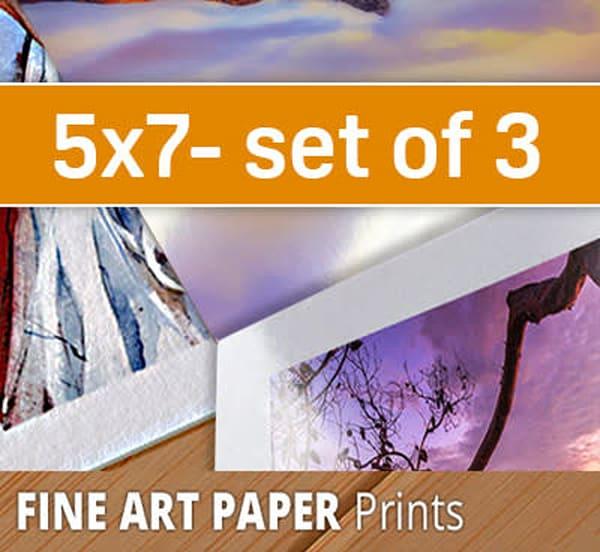 5X7 Paper Sample Pack (three 5x7's)