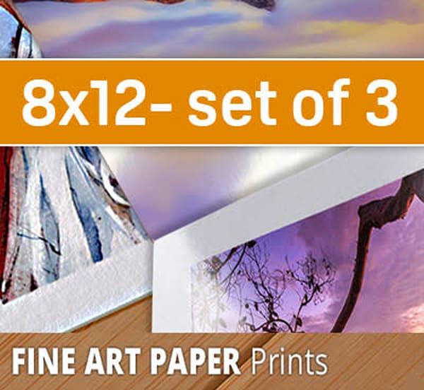 8X12 Paper Sample Pack (three 8x12's)
