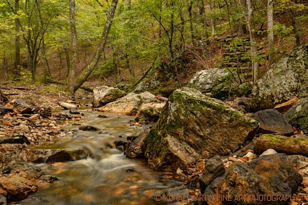 Lake Catherine Stream 0084  |  Photography | Koral Martin Fine Art Photography