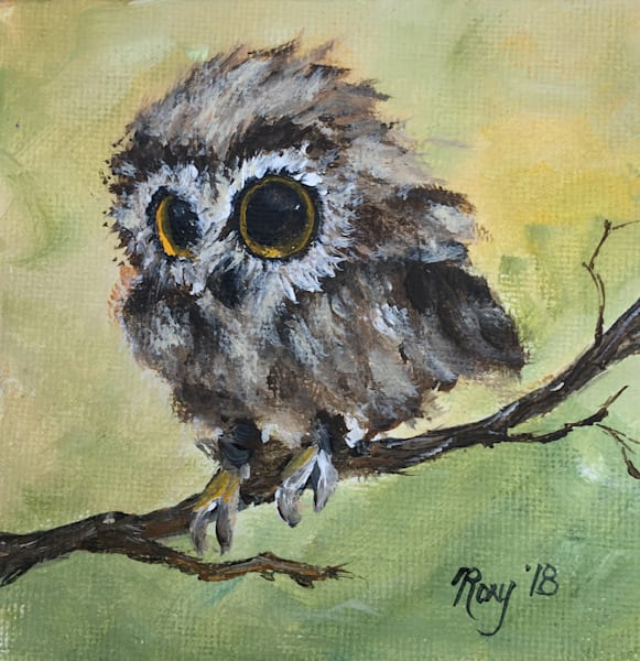 Fluffy owl chick