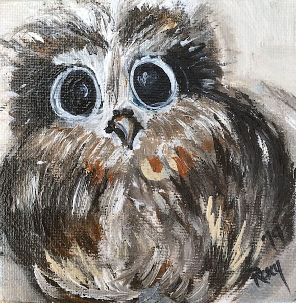 Big Eyes owl print