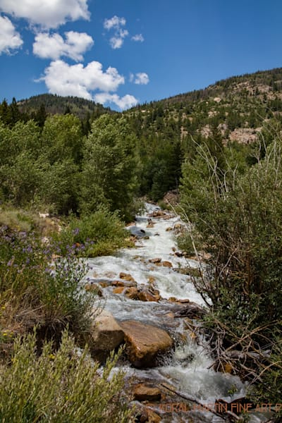 Colorado River Photograph 4657 | Colorado Photography | Koral Martin Fine Art Photography