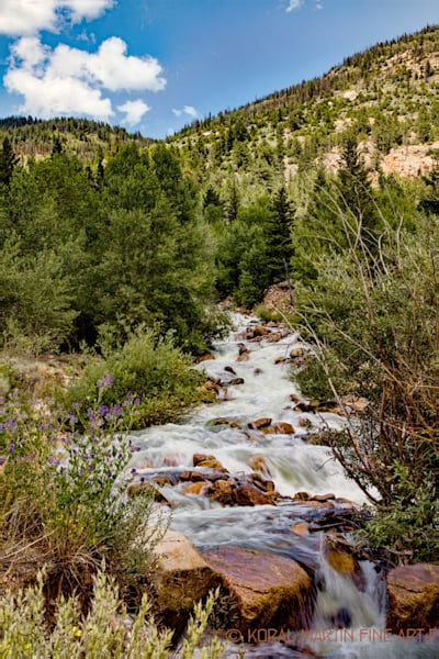 Summer Flow 4662 | Colorado Photography | Koral Martin Fine Art Photography