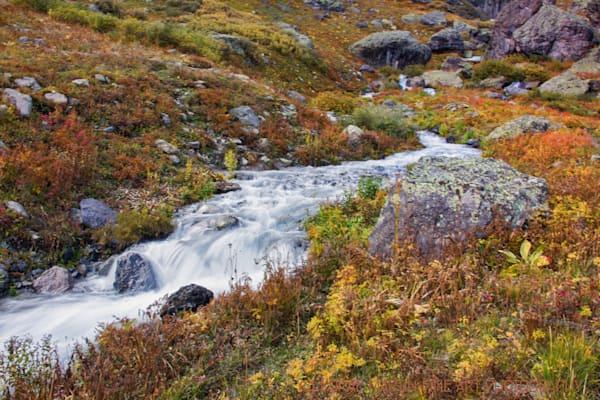 Mountain Stream along Ice Lakes Trail 8156  Photograph | Colorado  Photography |  Koral Martin Fine Art Photography