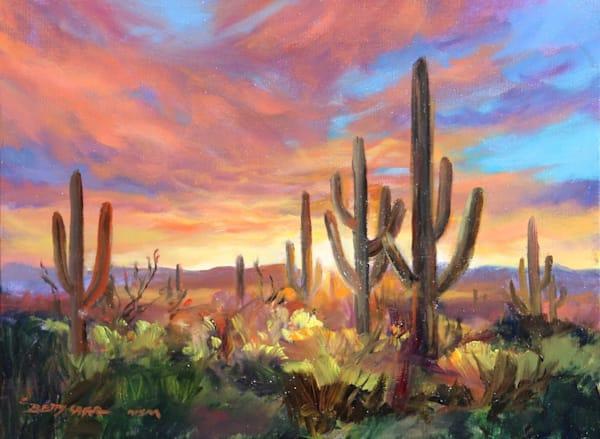 Desert Glow by Betty Carr