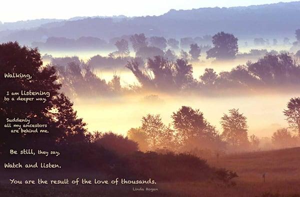 Morning fog on the lowlands - shop fine-art notecards | Closer Views