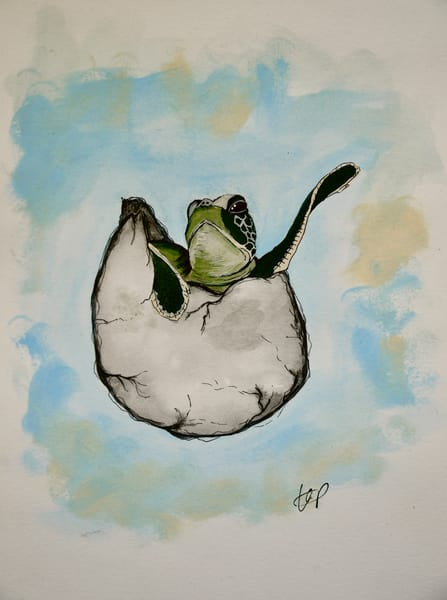 Baby Sea Turtle Art | Lindberghaus, Art by Dagi G.