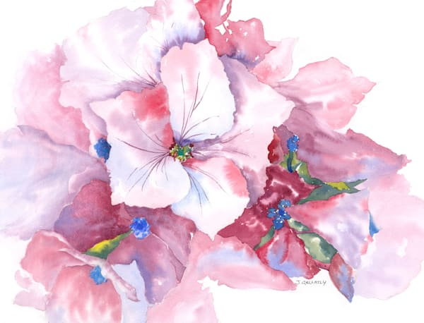 Jan Gellatly - Pink