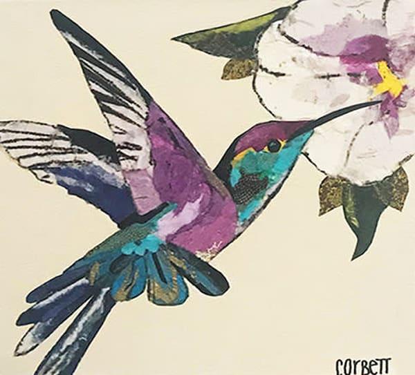 Violet Pam Corbett | Hummingbird