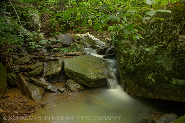 Artist Point Small falls Photograph 4611 | Waterfall Photography | Koral Martin Fine Art Photography