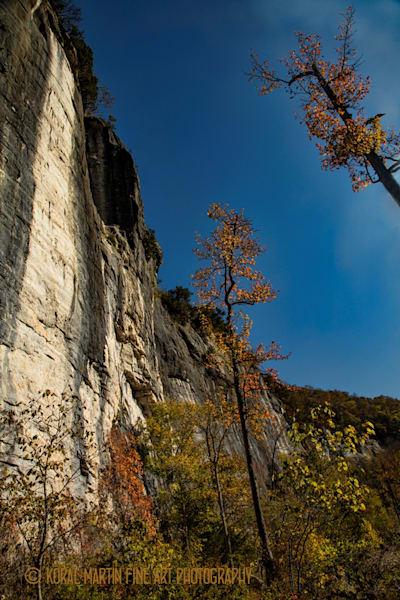 Buffalo River in the Fall Downstream 6831 | Waterfall Photography | Koral Martin Fine Art Photography