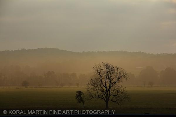 Foggy Sunrise Arkansas Photograph 9910  | Waterfall Photography | Koral Martin Fine Art Photography