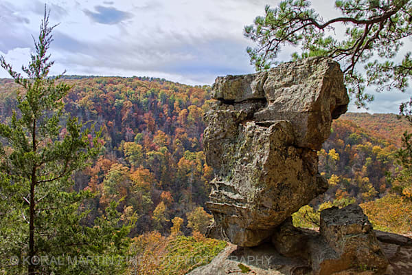 Hawksbill Crag Rock Photograph 2165 | Waterfall Photography | Koral Martin Fine Art Photography