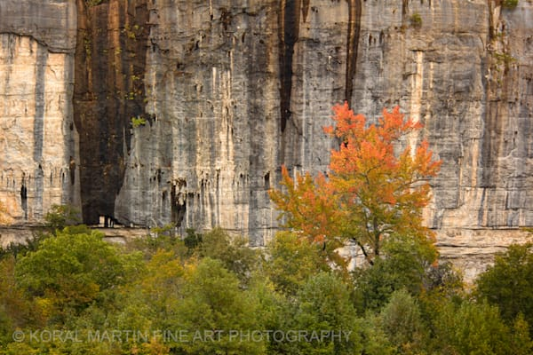 Swift Camp Buffalo River Photograph 1044  | Waterfall Photography | Koral Martin Fine Art Photography