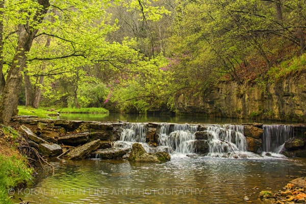 Waterfall Dogwood Photograph 8140 | Waterfall Photography | Koral Martin Fine Art Photography