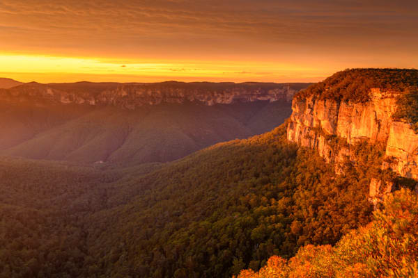 Govetts Gold - Grose Valley Govetts Leap Blackheath Blue Mountains National Park NSW Australia Sunrise