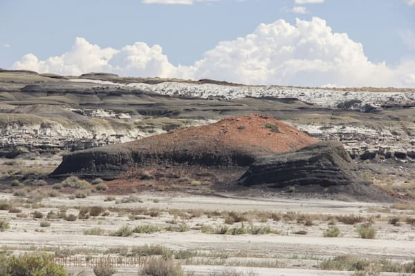 Bisti Di-na-zin Wilderness Photograph 9559  | New Mexico Photography | Koral Martin Fine Art Photography