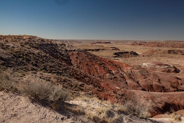 Painted Desert Photograph 1383  | New Mexico Photography | Koral Martin Fine Art Photography