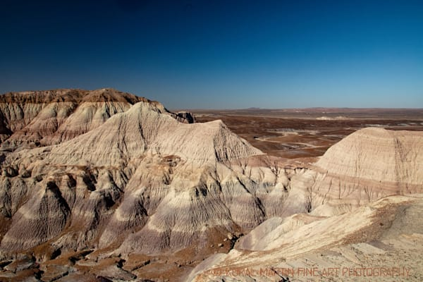 Petrified Forest Painted Desert Photograph 1449  | New Mexico Photography | Koral Martin Fine Art Photography