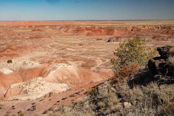 Painted Desert Photograph 1312  | New Mexico Photography | Koral Martin Fine Art Photography