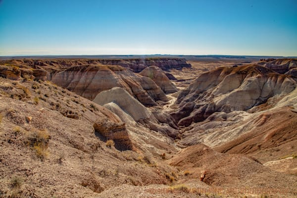 Petrified Forest Painted Desert Photograph 1442  | New Mexico Photography | Koral Martin Fine Art Photography