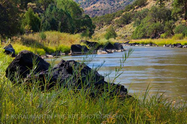 Rio Grande Wild River Photograph 0354  | New Mexico Photography | Koral Martin Fine Art Photography