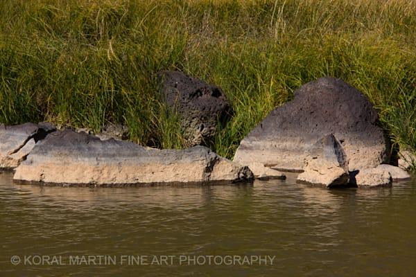 Rio Grande Photograph 0265  | New Mexico Photography | Koral Martin Fine Art Photography