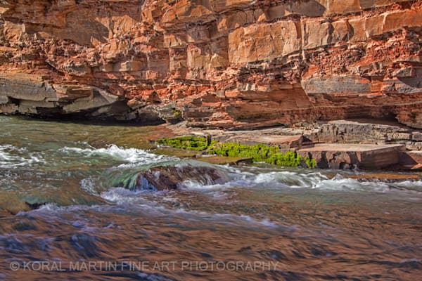 San Miguel River Photograph 5791C  | New Mexico Photography | Koral Martin Fine Art Photography
