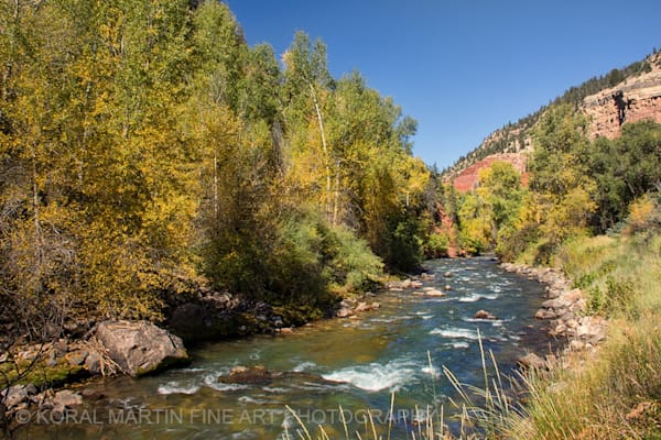San Miguel River Photograph 5980  | New Mexico Photography | Koral Martin Fine Art Photography