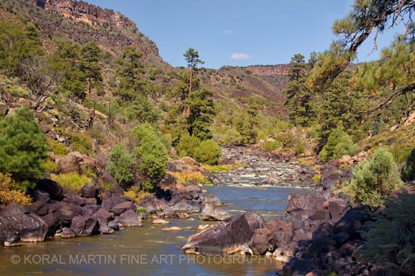 Rio Grande Wild Rivers Photograph 0468  | New Mexico Photography | Koral Martin Fine Art Photography
