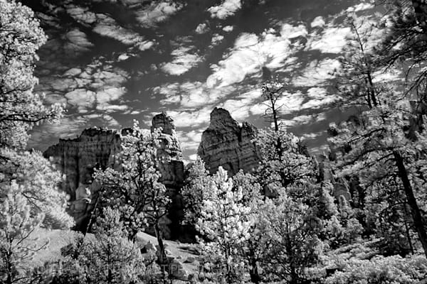 Infrared Red canyon Silver Photograph 5491 | Infrared Photography | Koral Martin Fine Art Photography