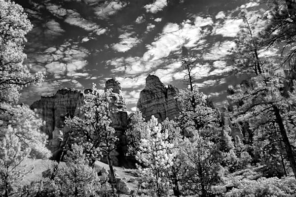 Infrared Red Canyon Photograph 5491C  | Infrared Photography | Koral Martin Fine Art Photography