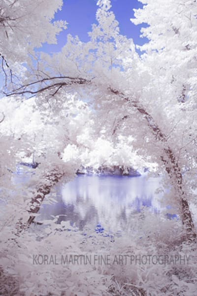 Infrared Shoal Reflection  | Infrared Photography | Koral Martin Fine Art Photography