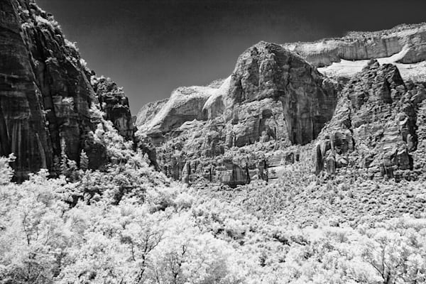 Infrared Zion Park Photograph 5456 Utah  | Infrared Photography | Koral Martin Fine Art Photography