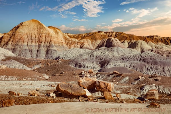 Petrified Forest LP Photograph 1488  | New Mexico Photography | Koral Martin Fine Art Photography