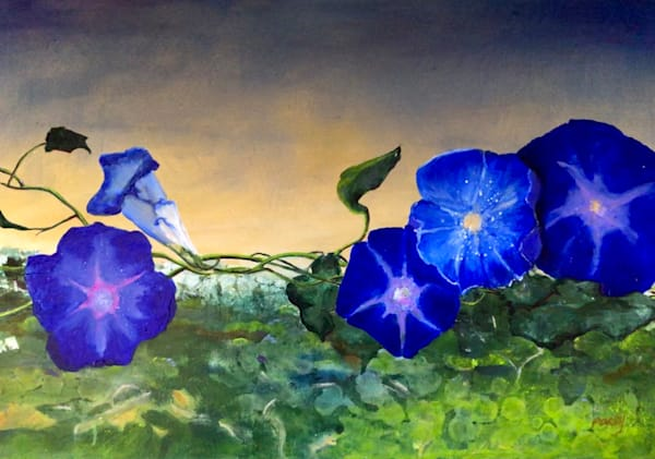 Morning Glories In The Sky Art | PoroyArt