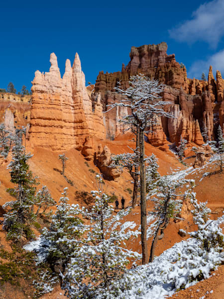 Light and Shadow Bryce Canyon