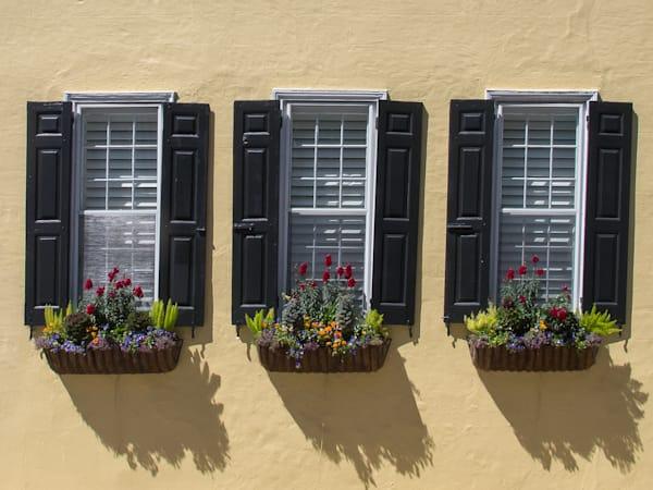 3 Windows with flower boxes Charleston, SC
