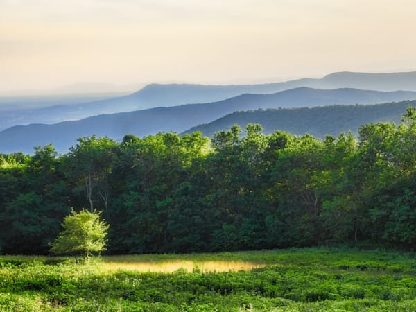 Late Day Blue Ridge Mountains