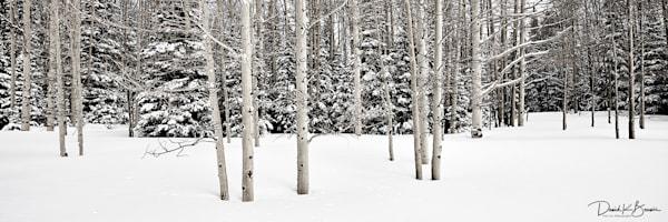 Silence Photography Art | David Beavis Fine Art
