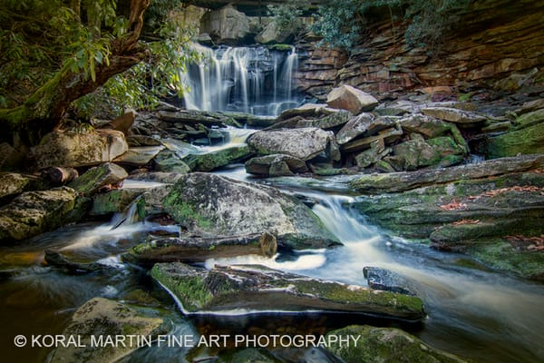 Elakala Falls Photograph 5305  | West Virginia and Virginia Photography | Koral Martin Fine Art Photography