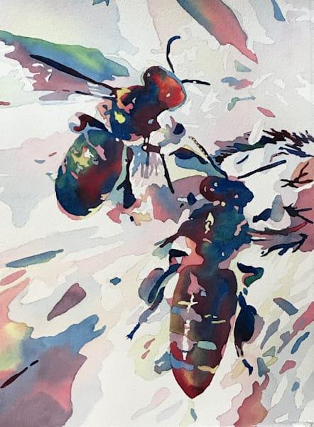 Unique Beneficial Bees inPrints/ Patrice Cameron Art.