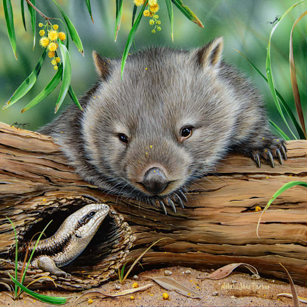 G'Day - Common Wombat With Eastern Blue-tongue Lizard | Acrylic on Clayboard
