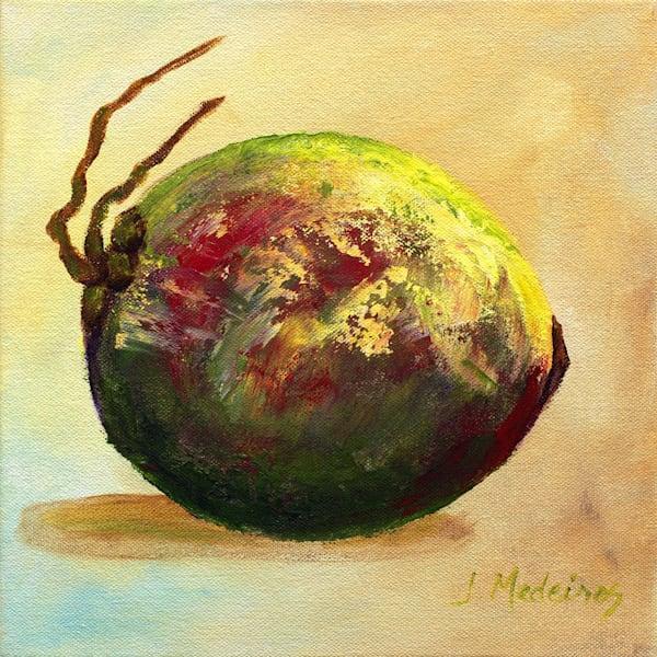 Red/Green Coconut Art | J. Medeiros Fine Art