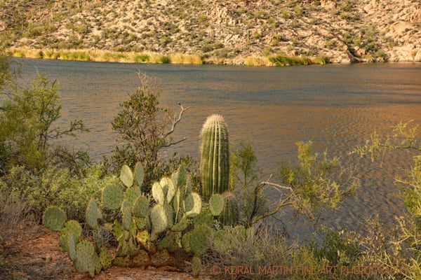 Apache Trail Canyon Lake Photograph 2434 AZ LF  | Arizona Photography | Koral Martin Fine Art Photography