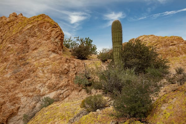 Apache Trail View Photograph 2366 AZ LF  | Arizona Photography | Koral Martin Fine Art Photography